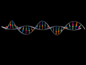 Layered illustration of DNA with global colors.